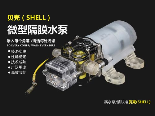 Crystal transparent micro diaphragm variable frequency pump