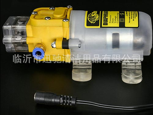 Massage apparatus spray pump
